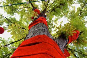 tree-415068_960_720